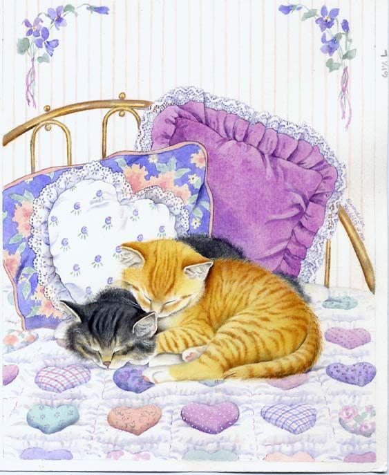 Для, картинки спящих котов рисунки