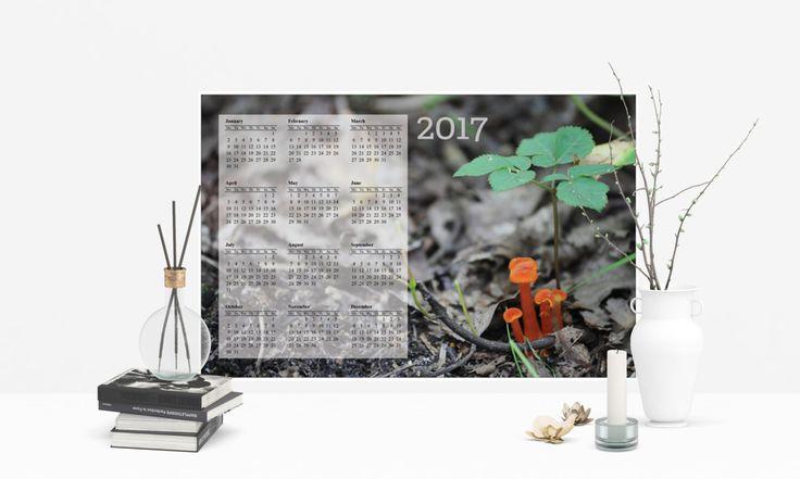 2017 12 Month Poster Calendar, Forest Mushroom Photo by OrangePeelPaperie on Etsy