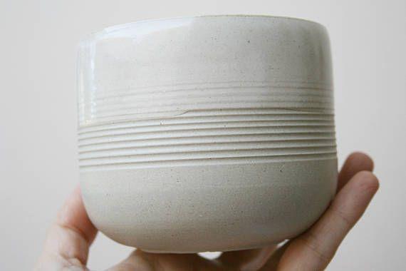 Stoneware Hand Thrown Planter. Cactus Succulent Indoor