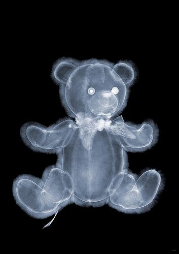 use teddy bear x rays for teddy bear hospital