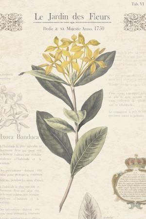 Le Jardin des Fleurs I Art Print by Maria Mendez at Art.com