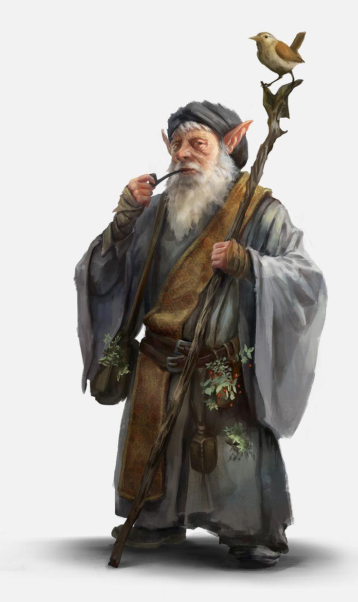 ArtStation - Jhaane, the elderly Gnome herbalist, Kim Van ...