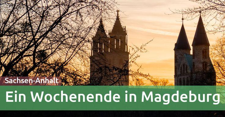 Ein Wochenende ist genau richtig, um Magdeburg zu erkunden. Wir erkundeten als Familie die Ottostadt, den Weihnachtsmarkt und das Wasserstraßenkreuz.