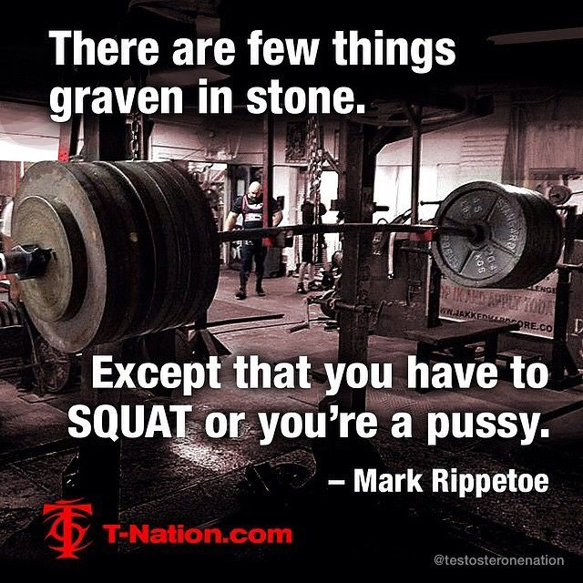 Powerlifting Motivation | testosteronenation #powerlifting #powerliftingmeme #powerliftingbelt ...