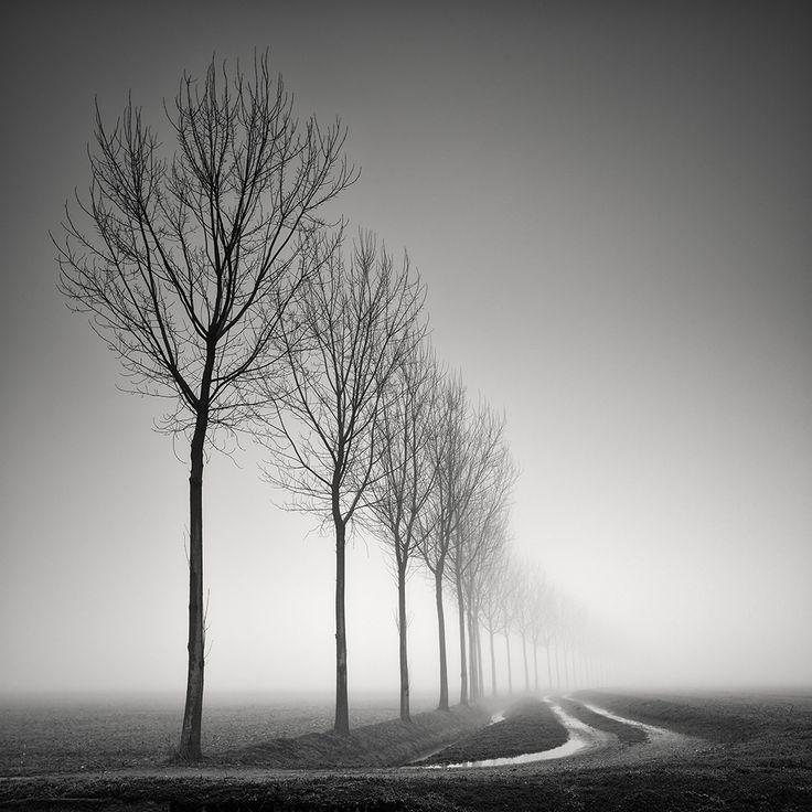 Sinuosity ii by pierre pellegrini landscapephotography photography minimalist photographyblack white photographymedium format