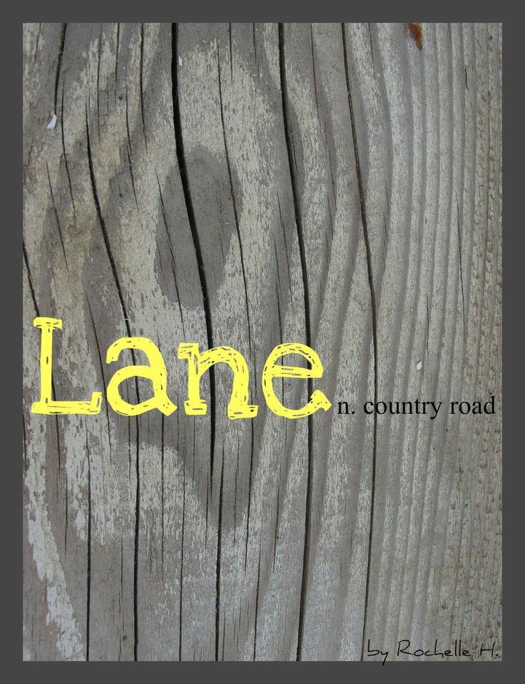 Boy or Girl Name: Lane. Meaning: Country Road. Origin: English. http://www.pinterest.com/vintagedaydream/baby-names/