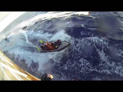 Attivisti di Greenpeace a bordo di una nave di carbone fuori dalla Grande Barriera Corallina - YouTube