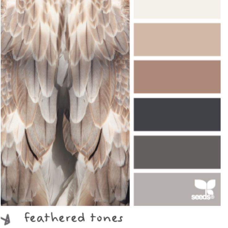 350 Best Color Schemes Images On Pinterest: Home Interior
