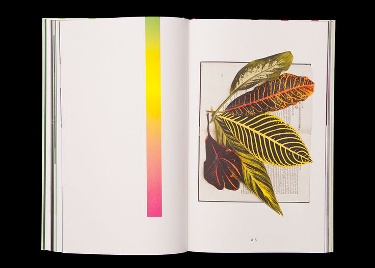 Soda Palm Suite, Lotte Geeven Lotte Geeven is a contemporary artist and works a lot with Day-Glo colors in her art. This aspect we translated into the printing process, when we replaced Magenta and Yellow with Day-Glo PMS colors. A German...