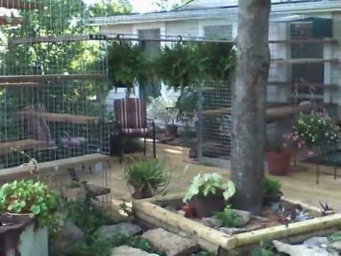 Cat Enclosure Video : Home of Habitat Haven, Cat Enclosure - Outdoor Cat Enclosures - Catios