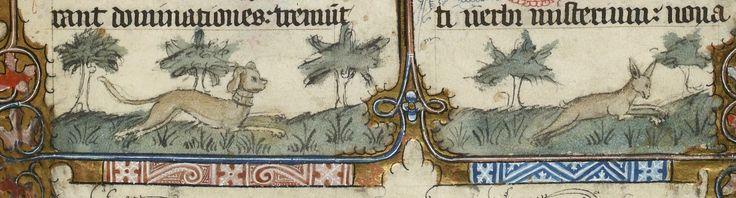 Missale Senonense. II Partie d'hiver. Date d'édition : 1401-1500 Type : manuscrit Langue : Latin Droits : domaine public Identifiant : ark:/12148/btv1b8529510r