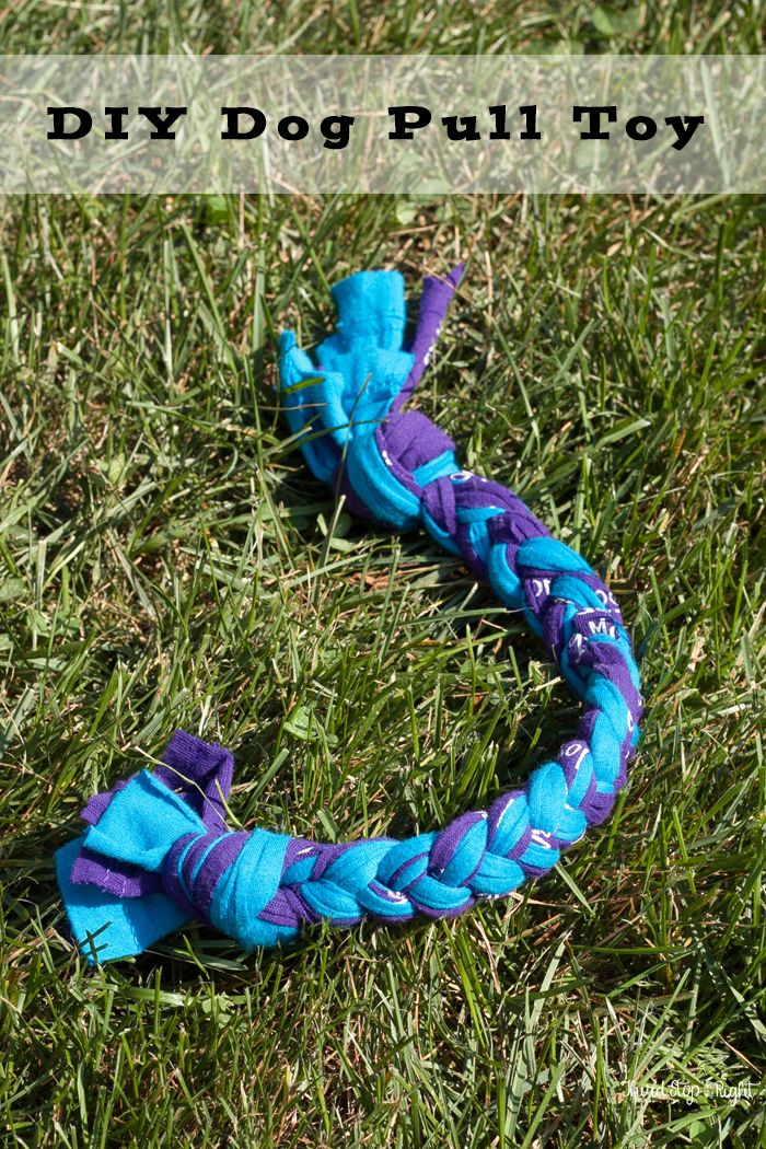 Making an Upcycled T-shirt Dog Pull Toy   Diy dog toys ...