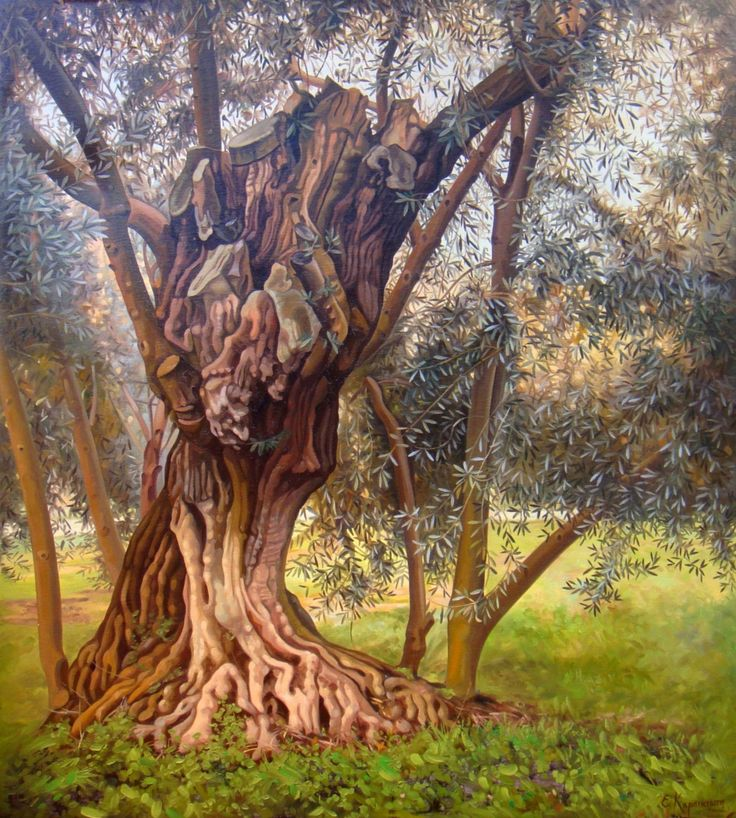 Landscape Olive Tree | Original Oil Painting | Classic Painting on Canvas | Handmade Painting | Realism | nature by OliviaArtGallery on Etsy