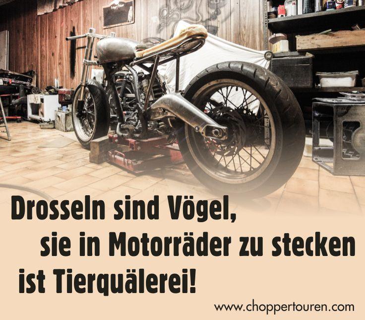 Drosseln sind Vögel, sie in Motorräder zu stecken ist Tierquälerei! ;-)