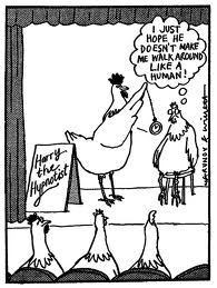 hypnosis cartoon hypnotherapy funny hypnotized chicken eye humor roll humour regression re eyes training into skeptical learn stage graphics poultry