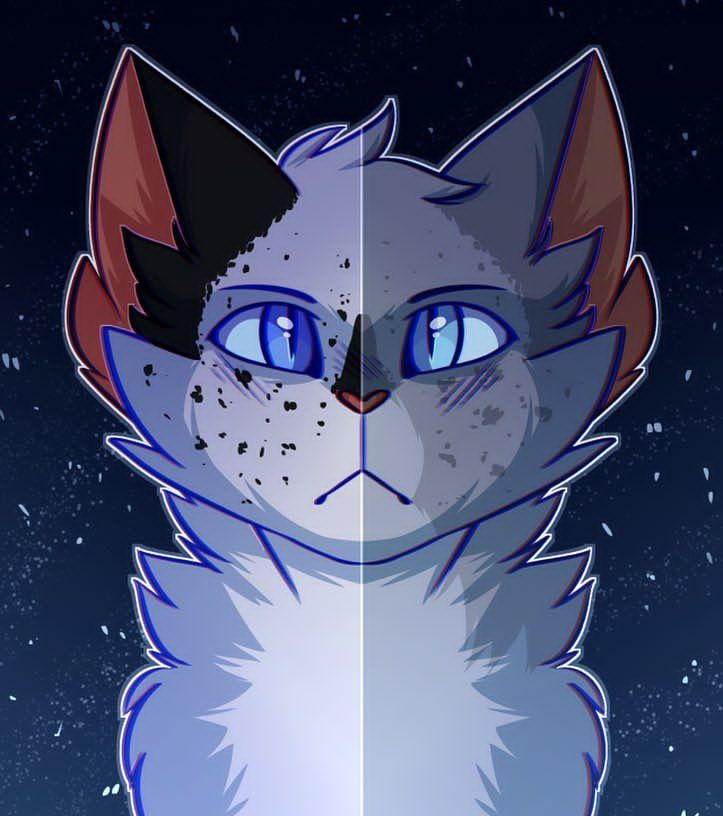 Snowfur and Bluestar Art by tordkin
