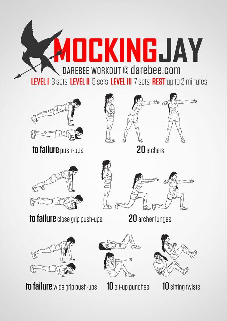 Mockingjay Workout Yoga Fitness - http://amzn.to/2hmQneS