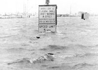 Hurricane Camille's Rising Tide.  Hurricane Camille had a 30 foot tidal surge that whipped up tidal waves in excess of 70 feet when it crashed into the Mississippi Gulf Coast on August 17-18, 1969
