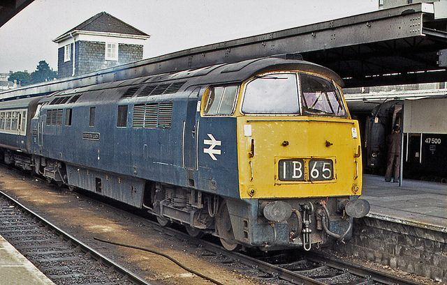 Class 52 D1048 Western Lady draws to a halt at Plymouth. It was a hot but overcast day on 8th September 1975 when D1048 arrived with this Paddington - Penzance working.