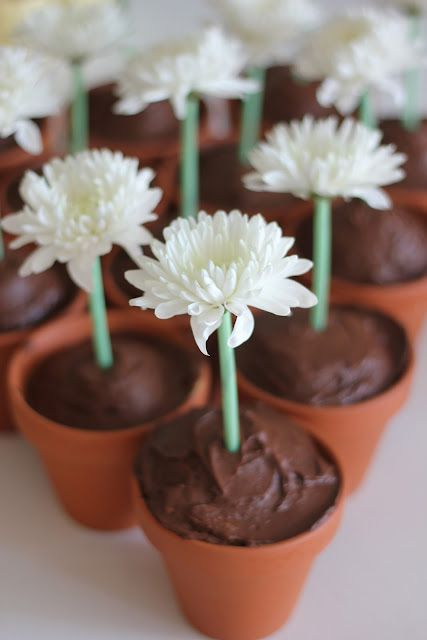 A Garden Flowers Birthday Party (This is an adorable and fun idea! From cupcake recipe to party activities.)