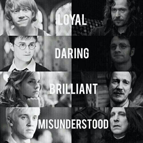 I love Harry Potter books and movies