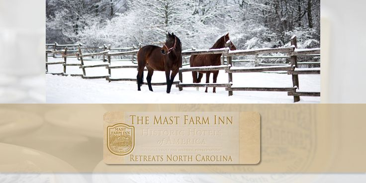 The Express Page | http://www.mastfarminn-retreats.com/express-page | The Mast Farm Inn of North Carolina specializes in weekday retreats and workshops. To get oriented quickly the Express page includes a summary of each section of the Retreats North Carolina website.
