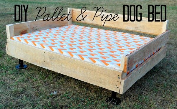 15 Super Cute Wood Pallet Dog Beds