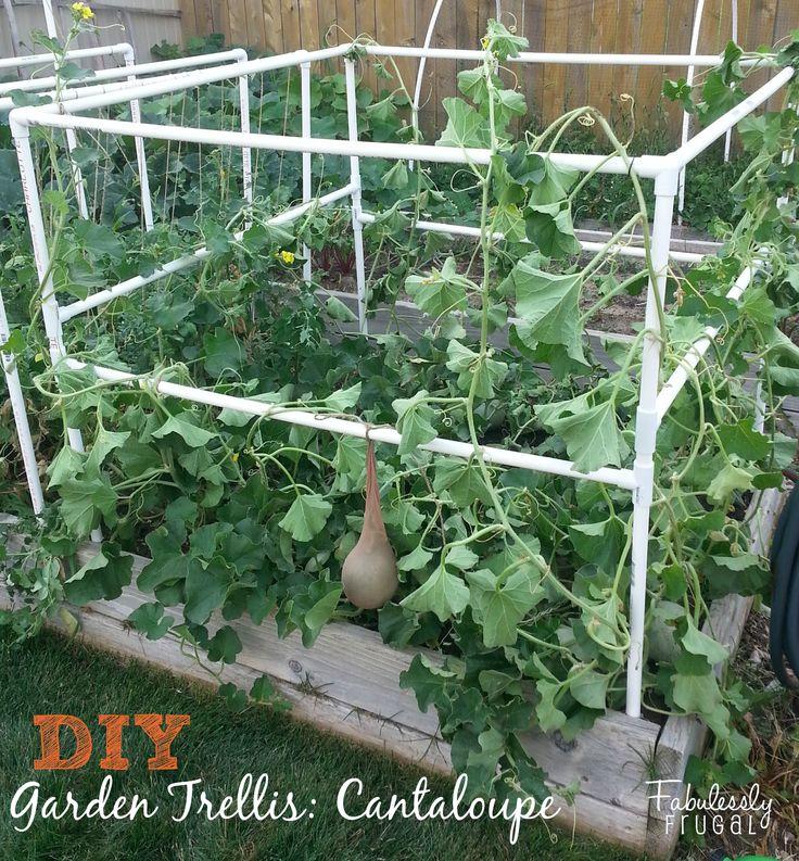 184 best diy garden trellis images on pinterest garden trellis
