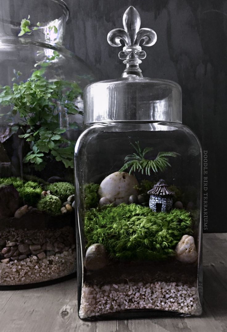 Miniature Cottage House for Terrariums and Fairy by DoodleBirdie