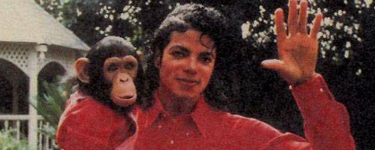 Taika Waititi y Mark Gustafson dirigirán 'Bubbles' la película sobre el mono de Michael Jackson  Noticias de interés sobre cine y series. Estrenos trailers curiosidades adelantos Toda la información en la página web.