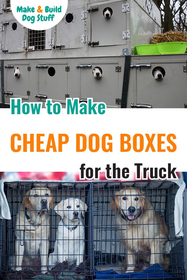 How To Make Cheap Dog Boxes For Trucks Dog Box Dog Box For Truck Diy Dog Kennel