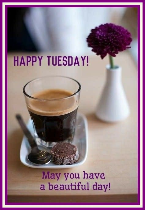 Good Morning! Happy Tuesday! May you have a beautiful day!  #goodmorning #goodmorningpost #good #flower #morningpost #morning #happytuesday #happy #tuesdaymorning #tuesday #gm #tuesdaymemes #gmw #tuesdays #tea #coffee #workgrind #purple #morninggrind #grind #riseandshine #blessings #am #post #posts #meme #memes #memesdaily #blessing #day
