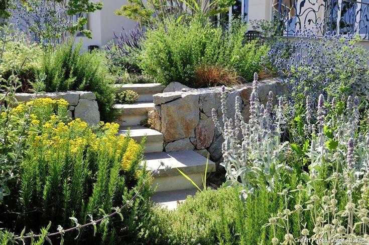 Au bord de la Méditerranée, le paysagiste James Basson a fait d'une pente engazonnée gourmande en arrosage un charmant jardin sec en terrasses.