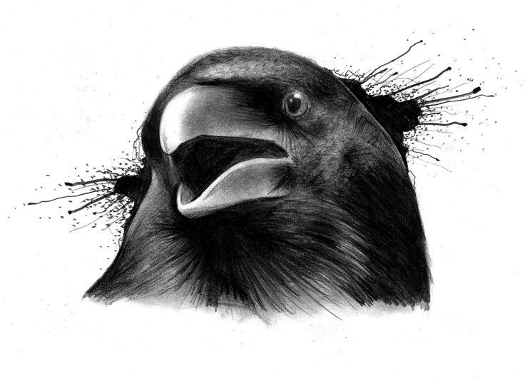 Trabajo a pedido (Cuervo) | Dibujo a lápiz sobre papel