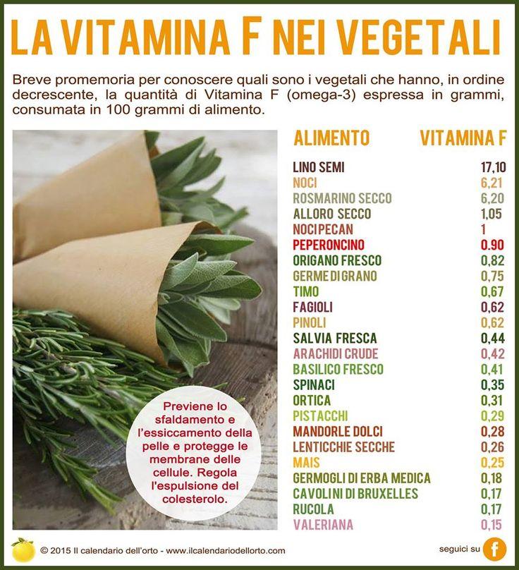 La vitamina F (omega-3) nei vegetali