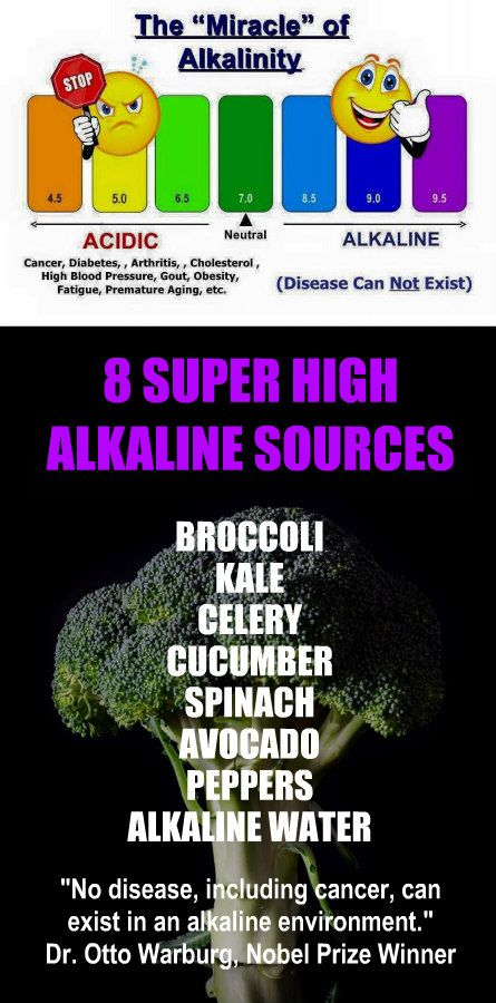 8 SUPER HIGH ALKALINE SOURCES: Broccoli, Kale, Celery, Cucumber, Spinach, Avocado, Peppers, Alkaline Water. Learn more about alkaline rich Kangen Water; the world's healthiest water. It's hydrogen ric