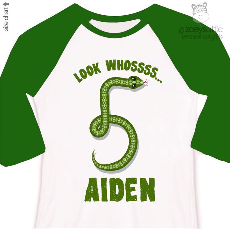 Birthday boy shirt personalized birthday boy snake RAGLAN shirt - great for reptile themed birthday party by zoeysattic on Etsy https://www.etsy.com/listing/223206620/birthday-boy-shirt-personalized-birthday