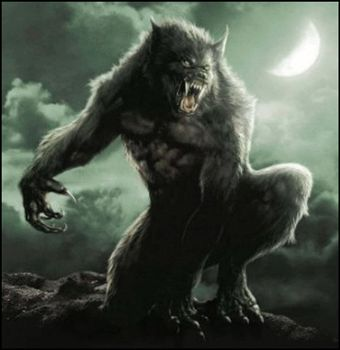 the creative writing werewolf Only tangentially related to writing, but i distinctly remembering being glad when i could not visit anyone, because then i could actually delve into the creative things and one was a relatively long lotr one the other was a wolf's rain one and one thing i realized, looking back.