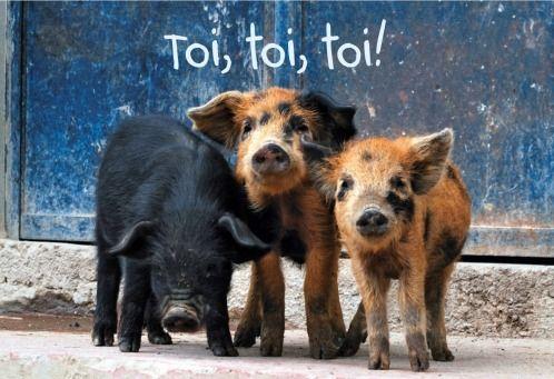 Toi, toi, toi! Cute Pigs   @FairMail - Fair Trade Cards - FDP6418