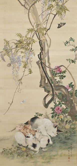 川端玉章 Kawabata gyokusho 1842-1913『猫図』(1881)