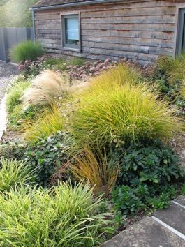 268 best Grasses images on Pinterest Garden ideas Gardens and