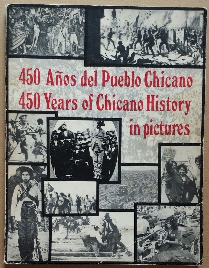 Chicano Movement Essay