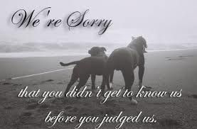 Remember...not 1 dog is the same as the other. Pit Bulls are dogs & not all of them are the same.