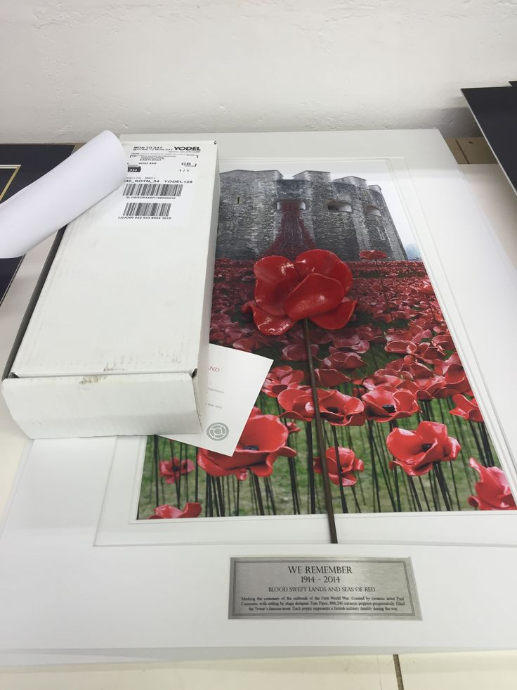 We have more poppies from the 'Blood Swept Lands & Seas of Red' display from last years poppy appeal to frame & display!