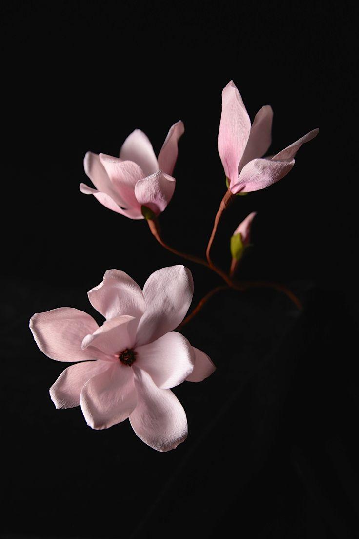 Crepe paper magnolia, handmade by Papetal