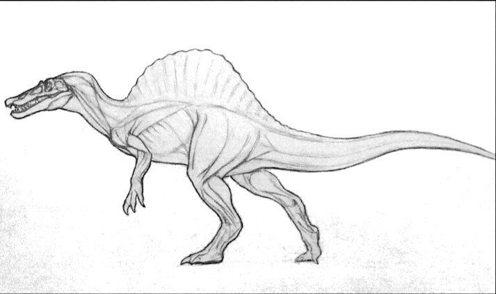 spinossaurus  fotos de dinossauros ilustração de