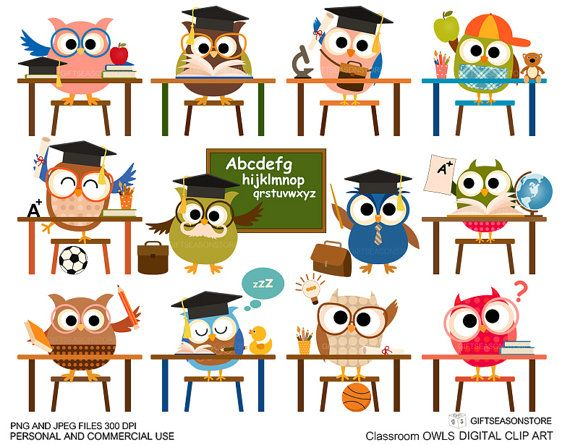 CULTURAL BINDER LABELS.......Classroom owl clip art for Personal and by Giftseasonstore on Etsy, $2.00
