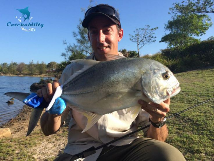 """GT caught by Steve - """"Took this solid GT from a landlocked backwater on my Gen Black 1-3kg rod with a 1000 Stradic and 8lb Millenium braid. I had to chase it over 500 metres in foot else it would have spooled me! Took around 30 mins to get it to the netchase.""""  #Fishing with Catchability"""
