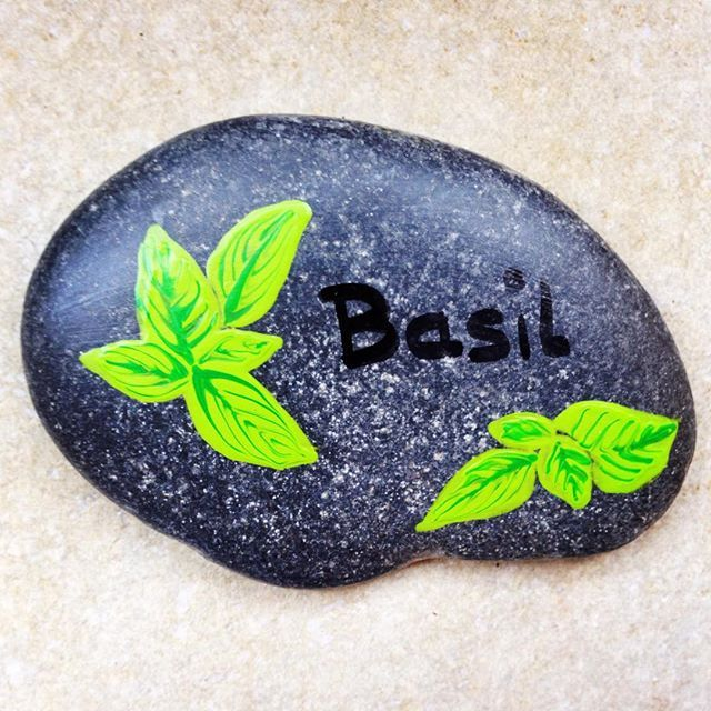 17 Best Images About Regrow Veggies On Pinterest: 17 Best Images About Pebbles And Stones