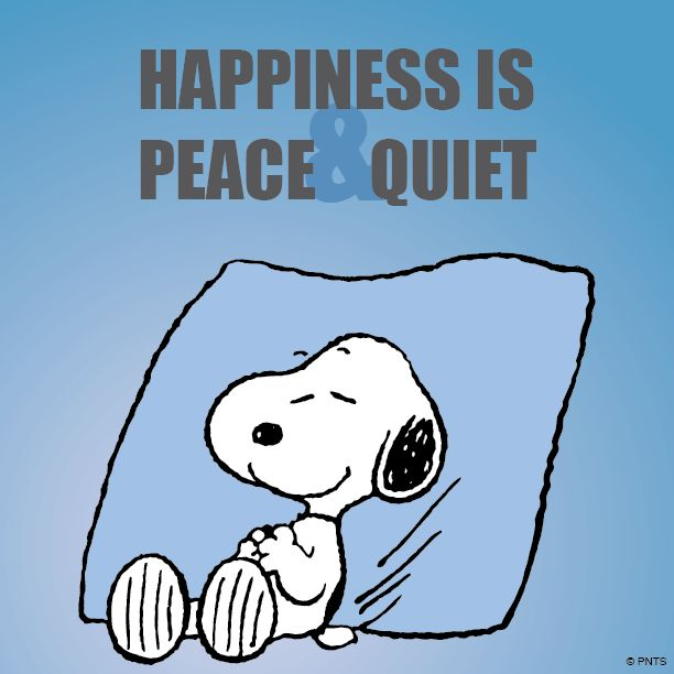 Happiness is peace and quiet. There is nothing I like better than peace and quiet when I really need it.